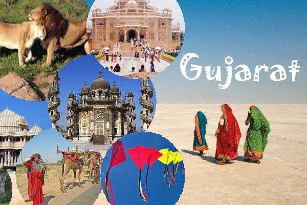 HDPE Tarpaulin Manufacturers in Gujarat